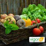 Vigore Plus mejora el cuaje de los frutos