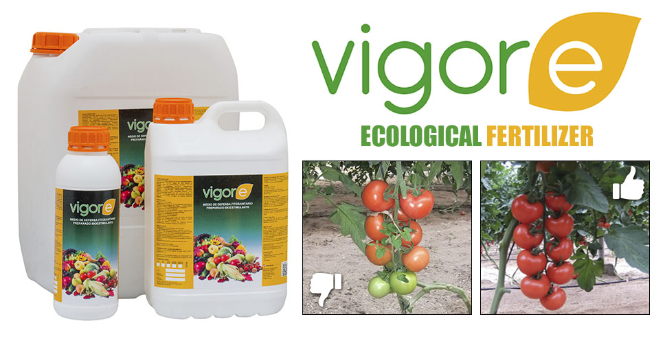 Vigore Ecological Fertilizer