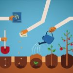 5 cuidados para un suelo óptimo: fertilizantes ecológicos
