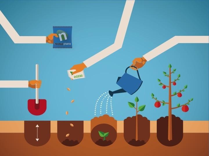 5 cuidados para un suelo ptimo fertilizantes ecol gicos for 5 cuidados del suelo