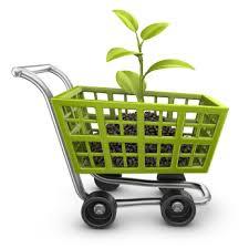 Productos ecológicos: éxito asegurado con Acuae y Vigore