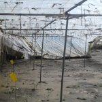 El temporal de las últimas semanas deja graves daños en Andalucía y Valencia