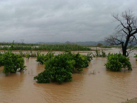 Piden declarar de zona catastrófica las zonas afectadas por el temporal