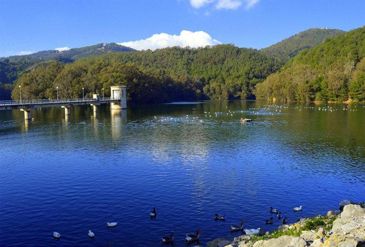 Las reservas hidráulicas españolas al 51% de su capacidad