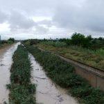 """Las últimas lluvias, """"oro caído del cielo"""" para la agricultura alicantina"""