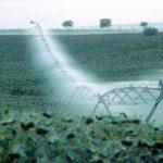 Agricultura impulsará las mejoras de los regadíos
