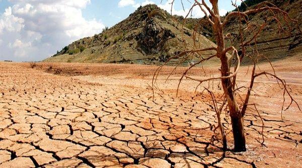 Agricultura está trabajando contra la sequía