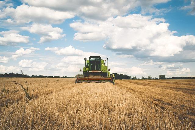 Agricultura se vuelca en facilitar la producción ecológica