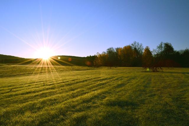 Agricultura de conservación, un futuro inevitable
