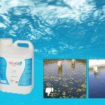 Acuae mejora el aspecto de estanques, lagos y fuentes
